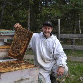 BeeHappy Imker Felix Mrowka, der Glückliche Imker posiert mit einer Brutwabe kanadischer Honigbienen