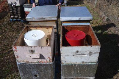 Zwei Futter Eimer auf zwei Bienenvölkern