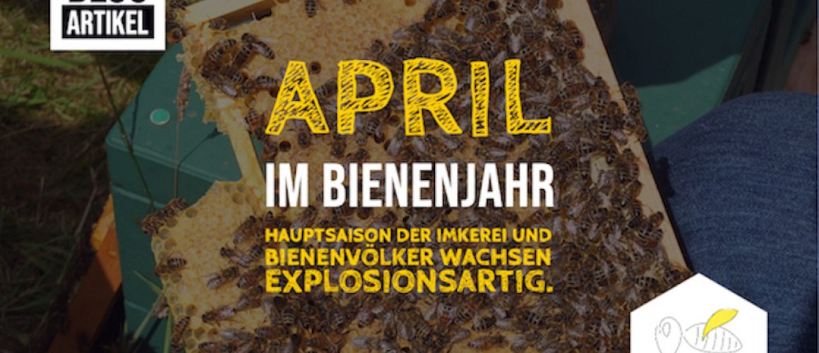 April Bienenjahr