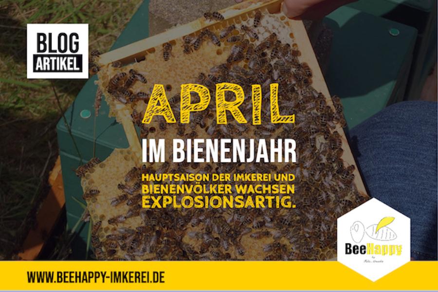 April Bienenjahr