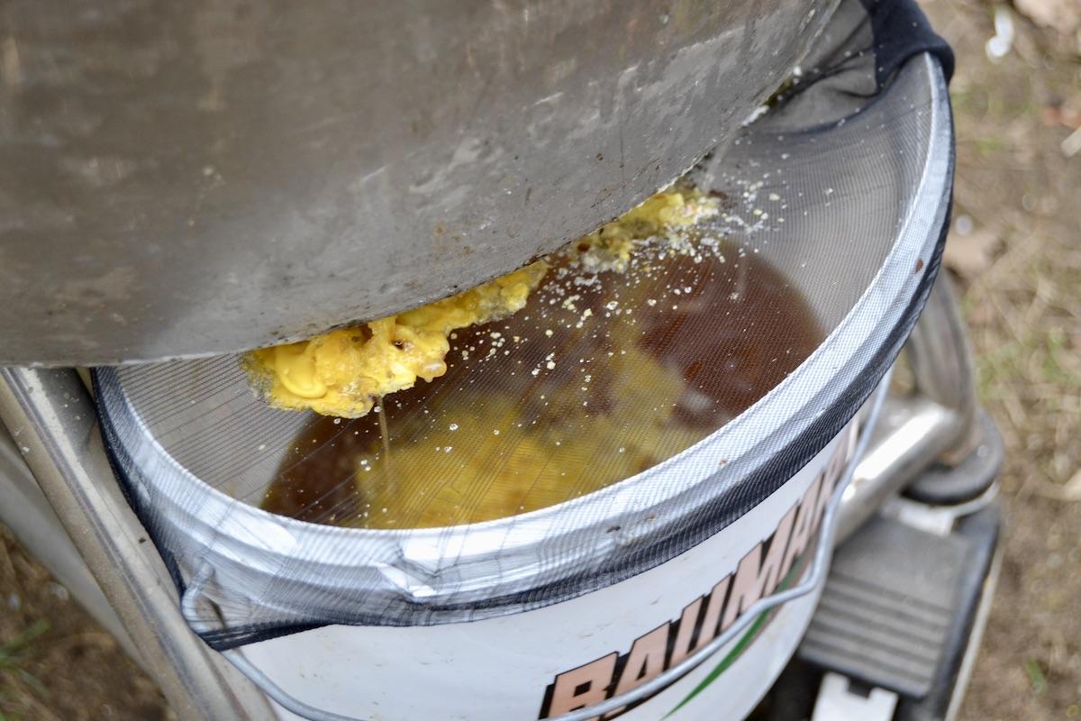 Bienenwachs tropft aus einem Dampfwachsschmelzer