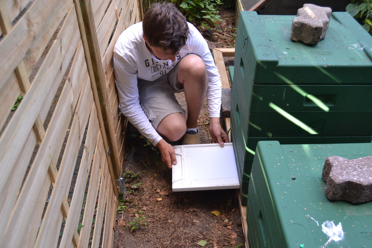 Eine Kontrollschublade wird einem Bienenvolk entnommen